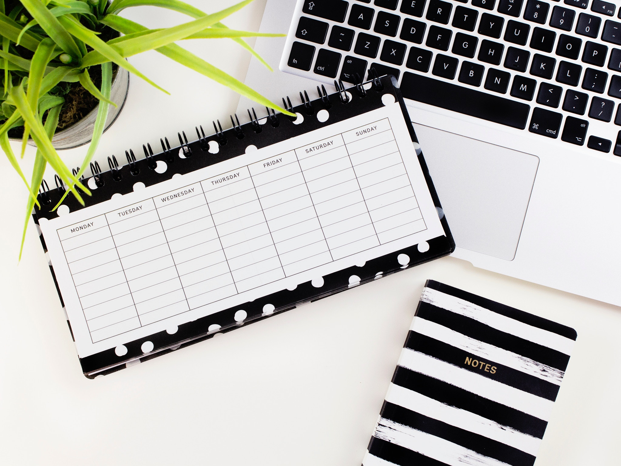 hen party planning spreadsheets