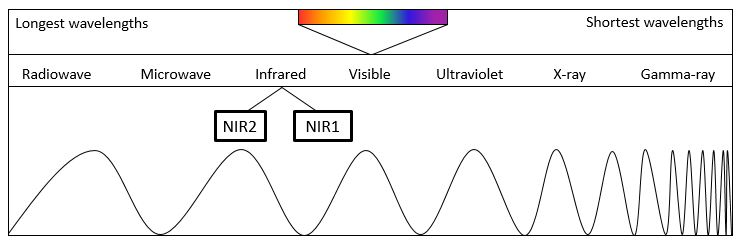 Graphic by Stephanie DeMarco Box 1: The electromagnetic spectrum is a representation of the different wavelengths of light. It is depicted here showing light with the longest wavelength on the left to light with the shortest wavelength on the right. NIR1 and NIR2 both represent specific ranges of wavelengths in the infrared part of the spectrum, with NIR1 corresponding to wavelengths from 650-900 nm and NIR2 corresponding to wavelengths from 950-1400 nm.