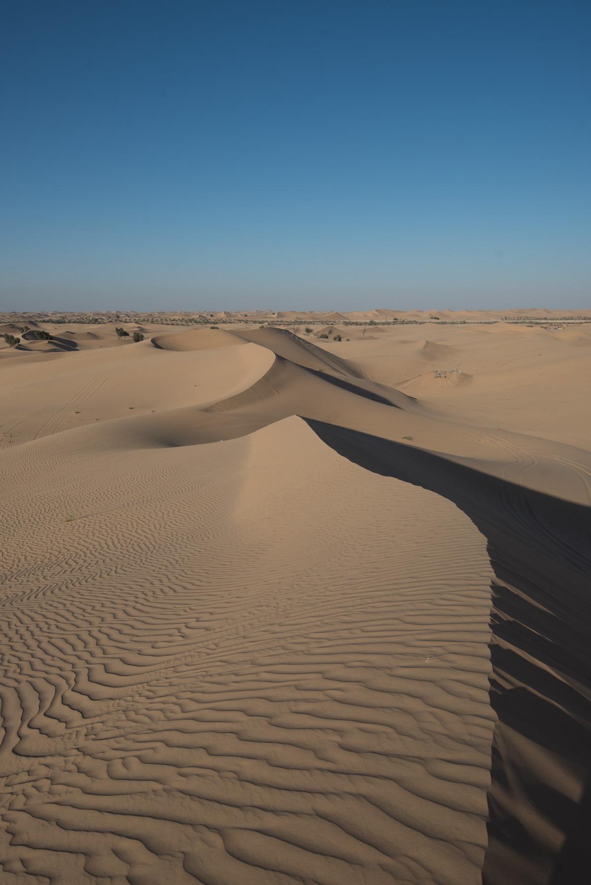 Before-desert-8.jpg
