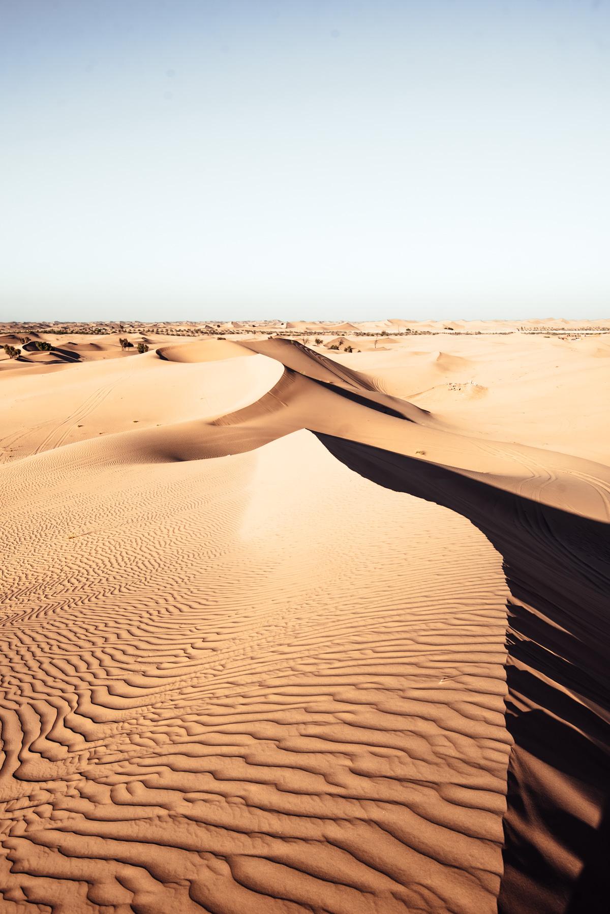 Before-desert-7.jpg