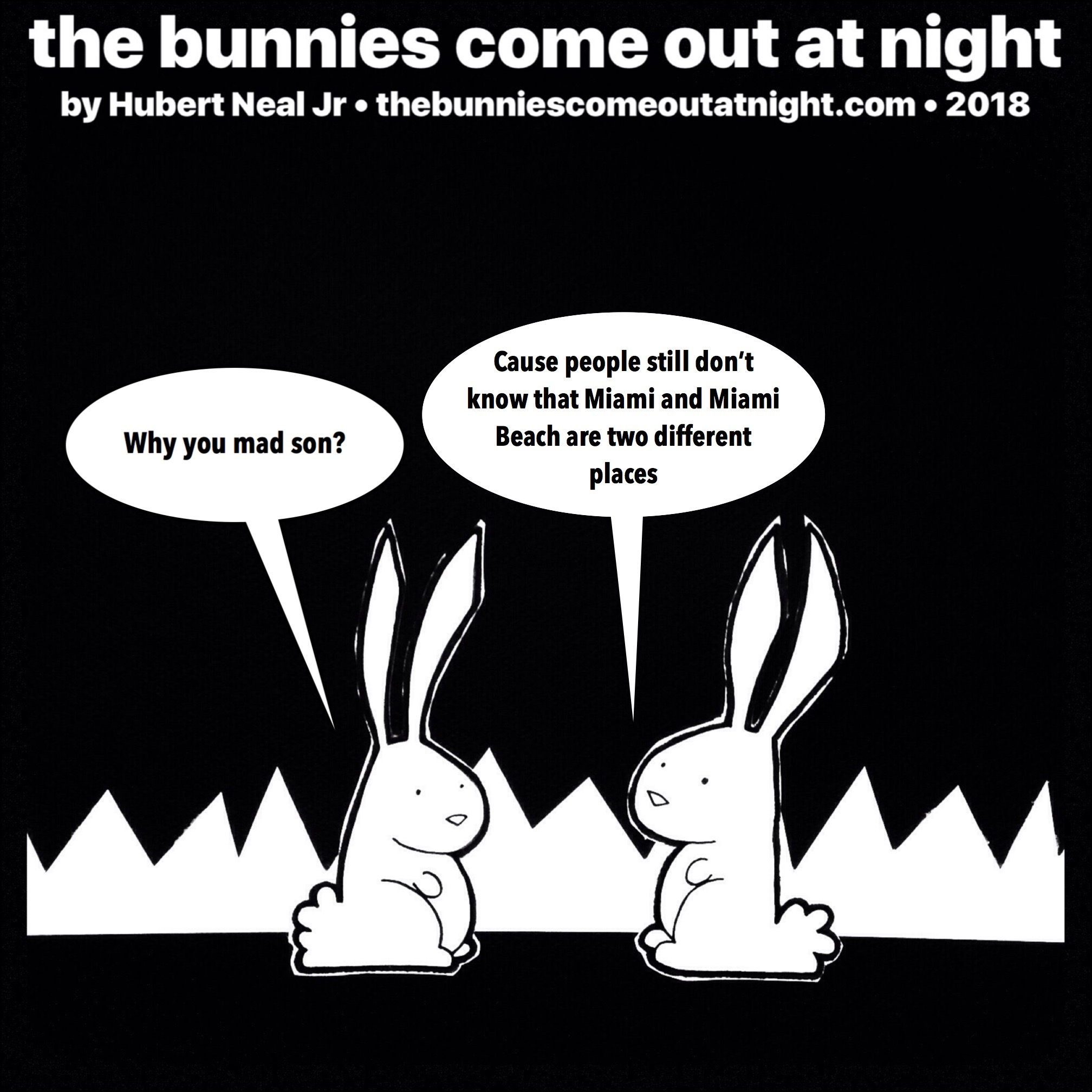 the bunnies come out at night