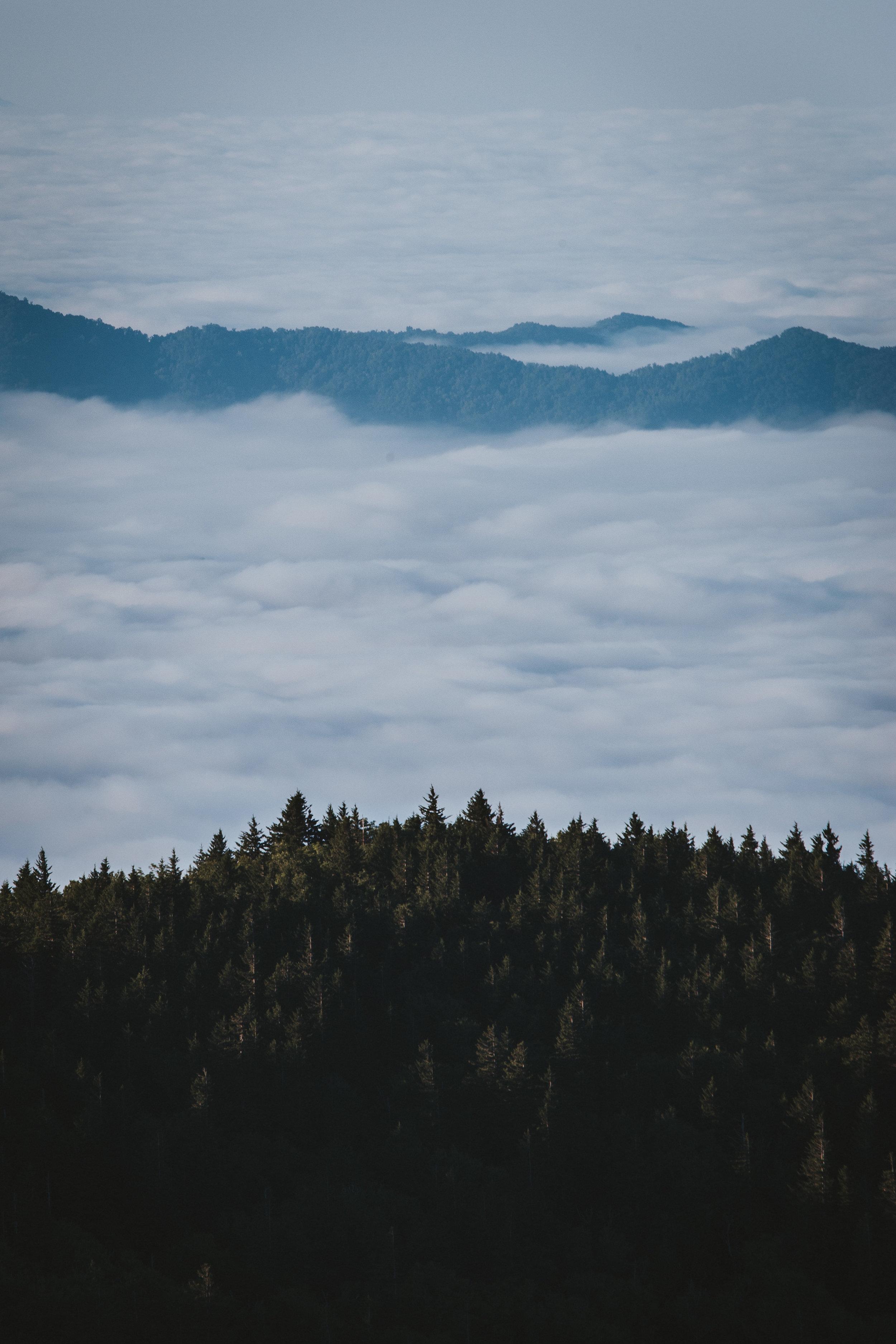 North Carolina Tennessee -