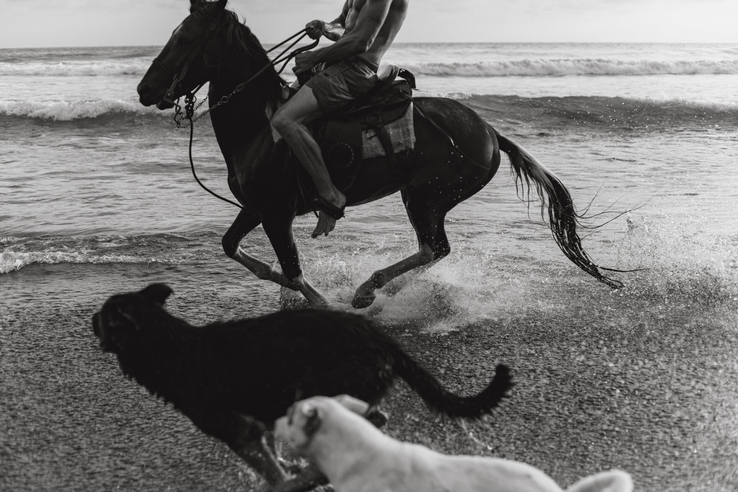mizata-horse.jpg