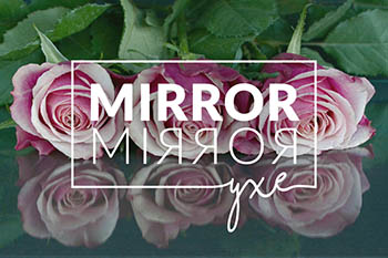 MirrorMirrorSlidesmall.jpg