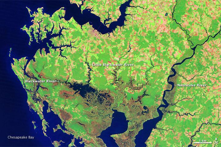 USGS map of Blackwater
