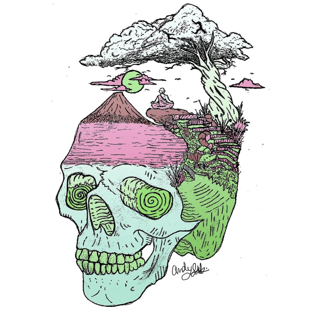 Surreal Skull Illustration