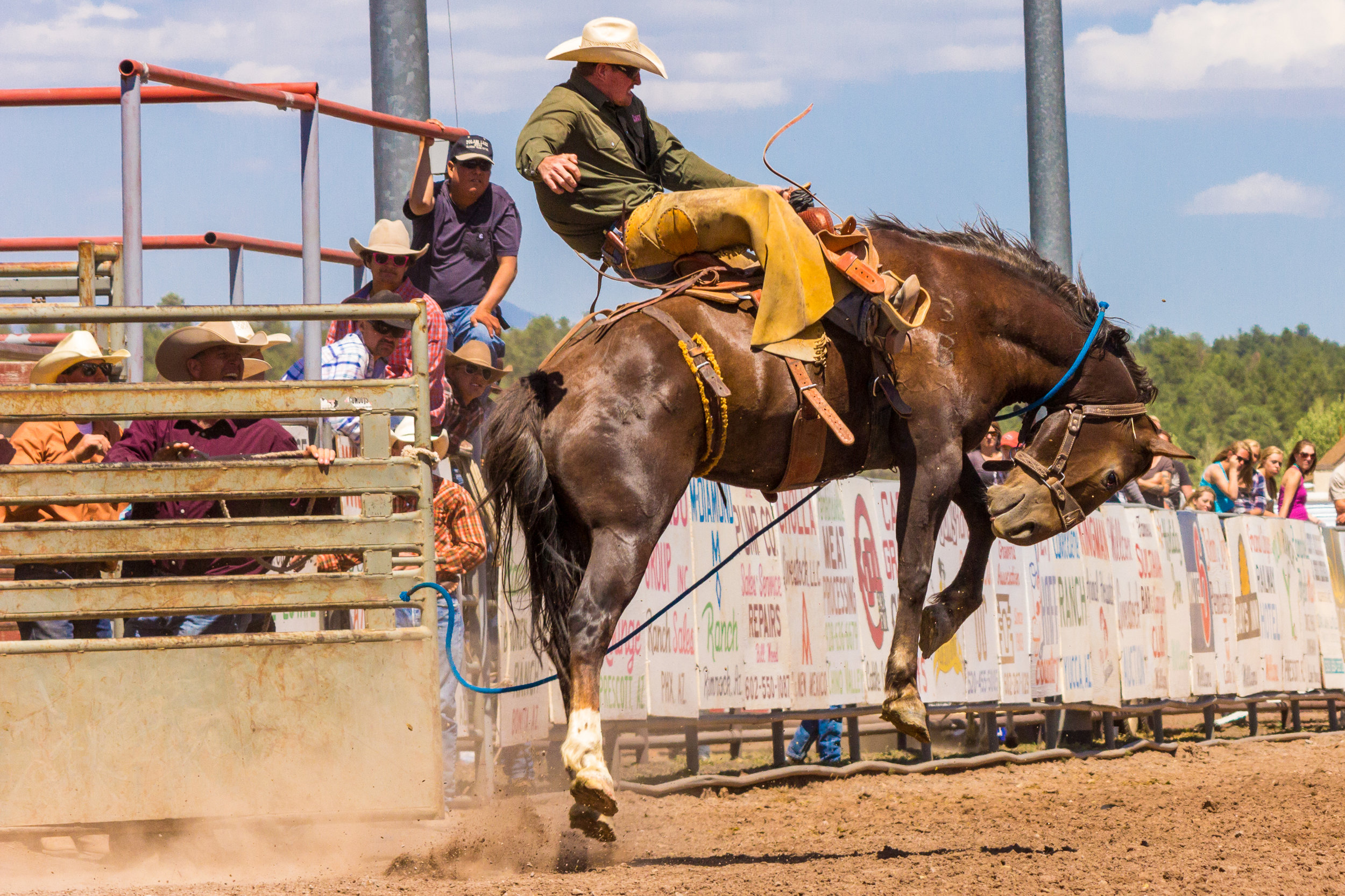 Rodeo!_8.jpg