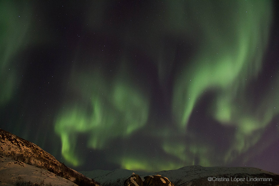 Aurora_7.jpg