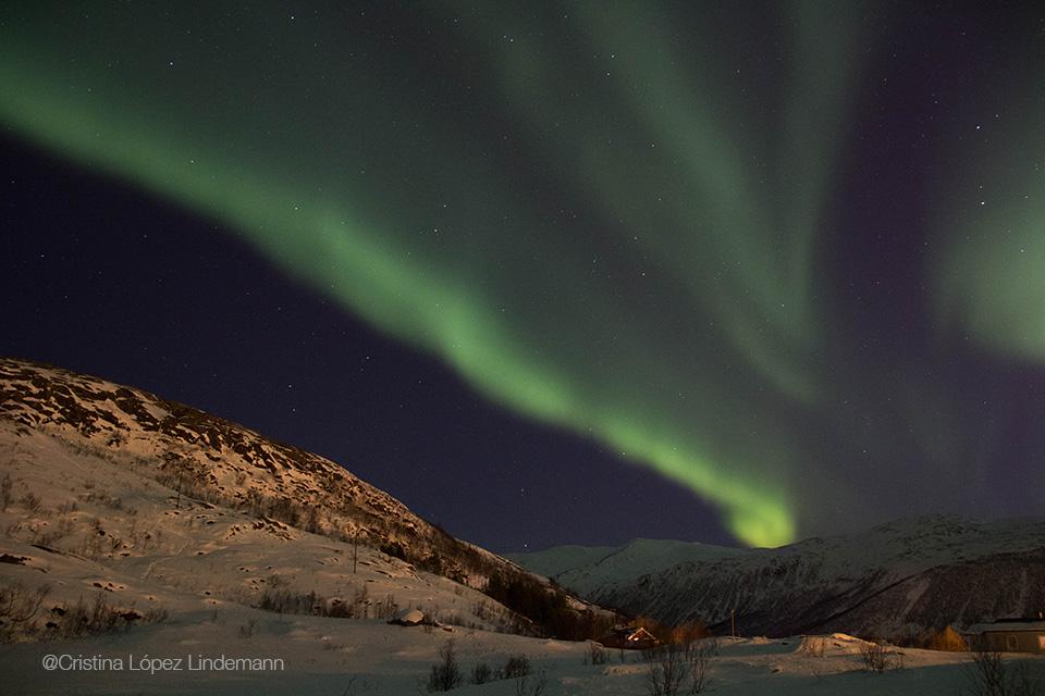 Aurora_4.jpg