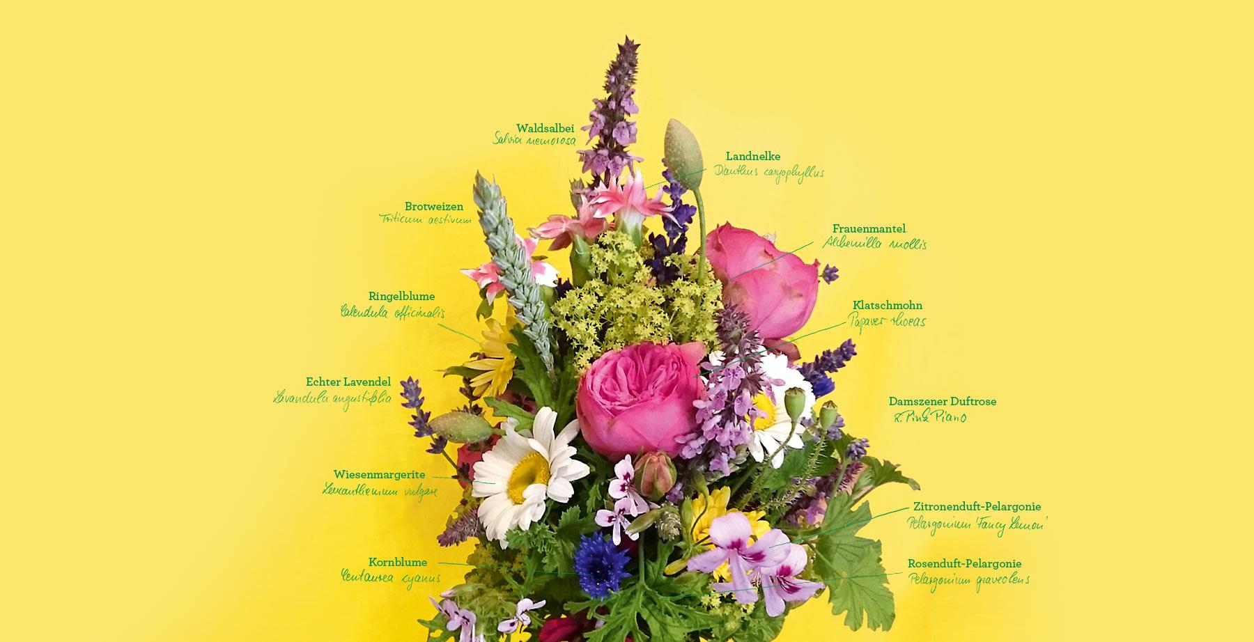 DONAFLOR_natuerliche-Floristik-Lieferservice_Index2a.jpg