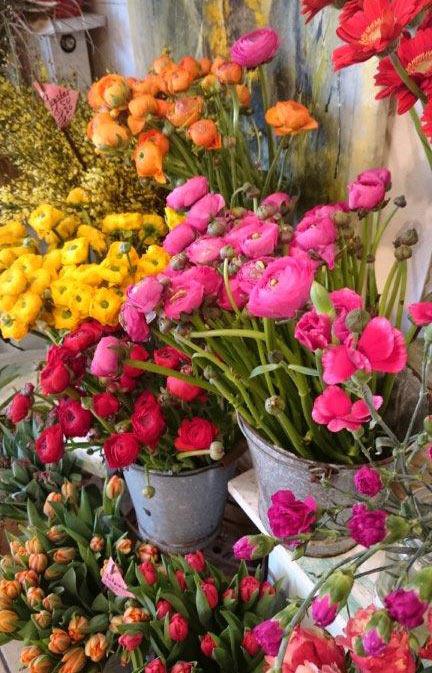 DONAFLOR_natuerliche-Floristik-Lieferservice_Blumen2.jpg