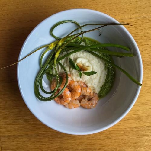 Day 6Pest Shrimp & Creamy Cauliflower -
