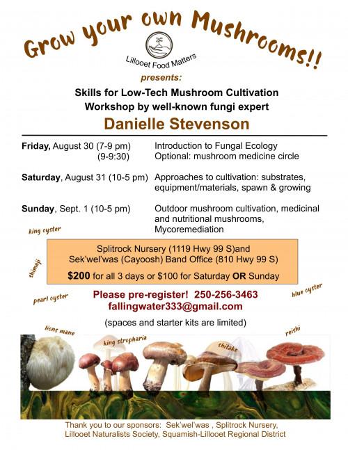 Mushroom workshop.jpg
