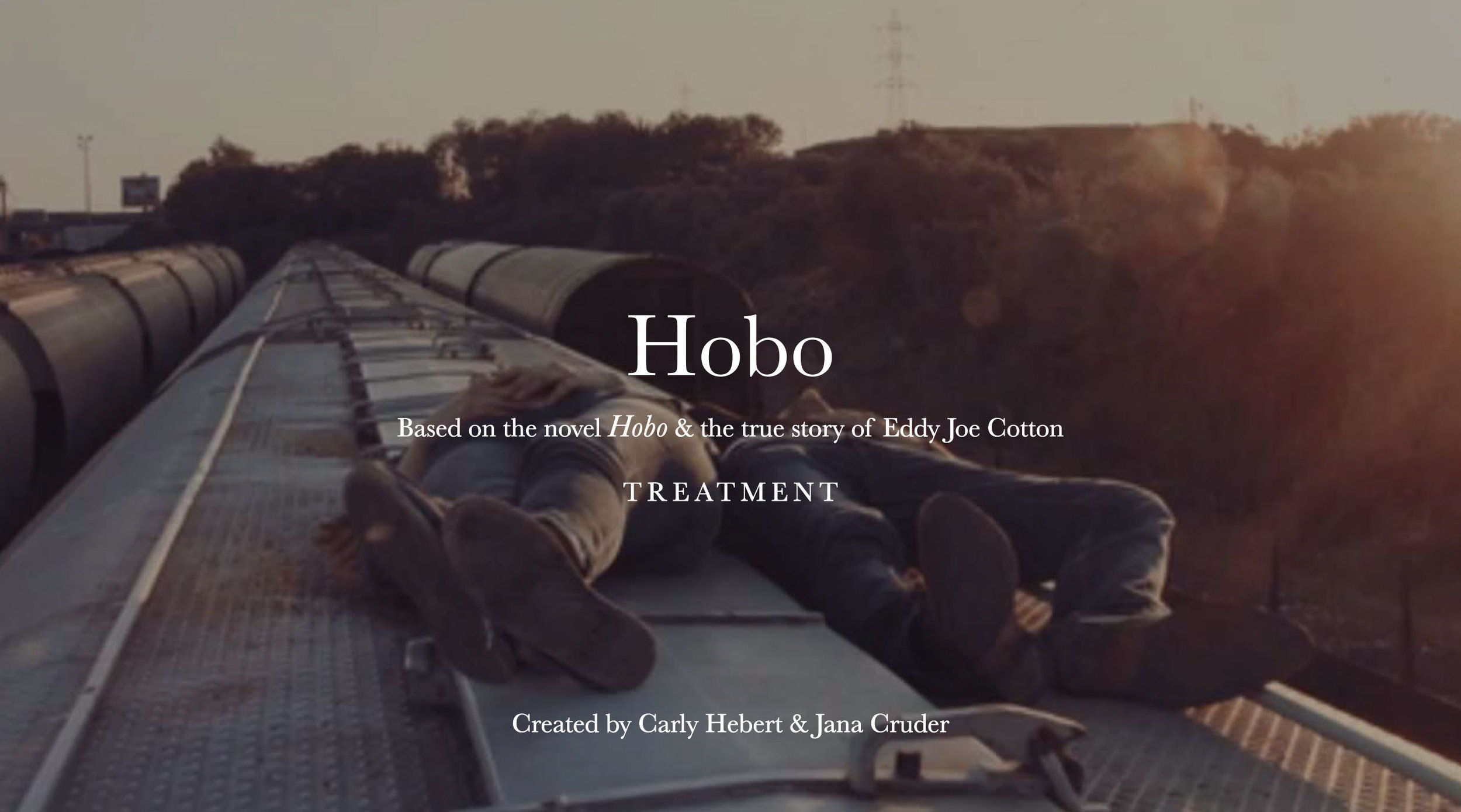 Hobo_treatment 1.jpg