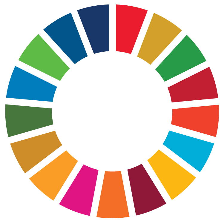 United Nations 2030 Sustainable Development Goals - UNDP