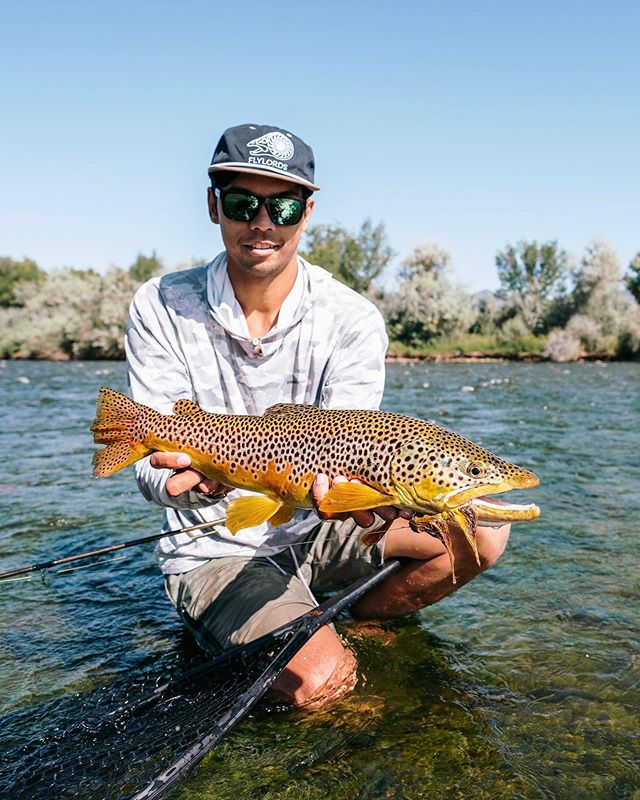 Need some streamers for the weekend? We got'em! Stop by one of the shops and fill up your 🥩 locker! . . . #arboranglers#catchandrelease #nature#outdoors#angler #fish #fishinglife#tightlines #flyfish #colorado#trout#rainbowtrout #browntrout#dryfly#nymph#river #troutnation#flylife#troutporn #rivertherapy#patagoniaflyfishing #troutfishing#flyfishingnation #trout #troutonthefly #flyfishing #flyfishingjunkie #streamer