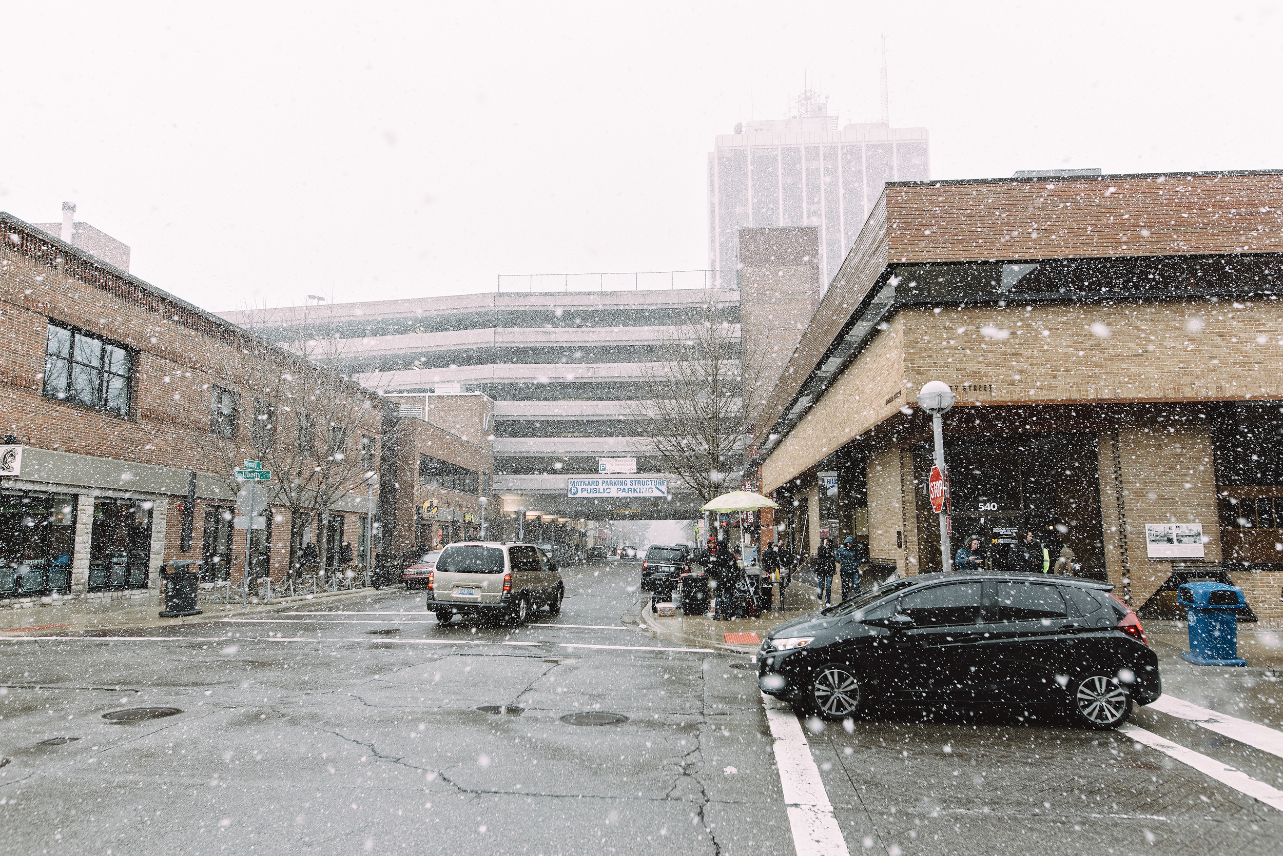 snow snow snow.jpg