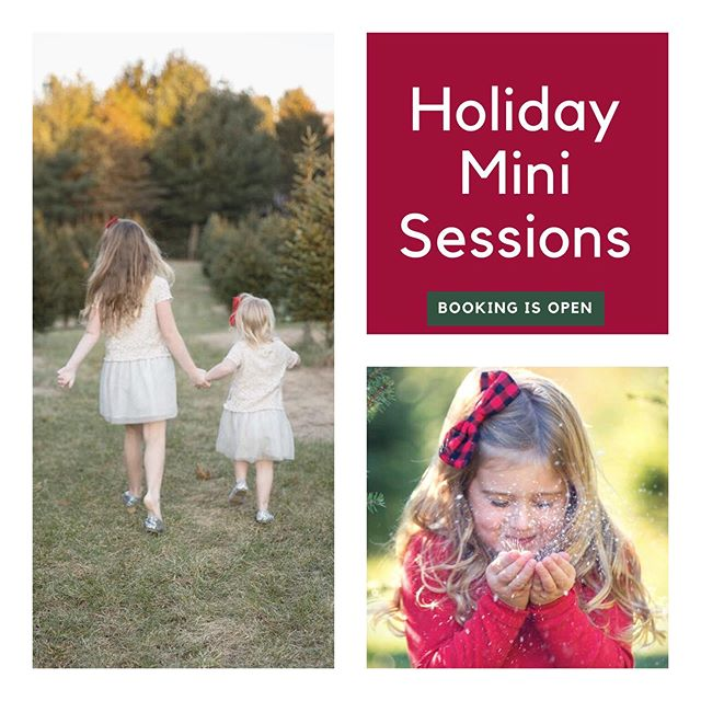 Holiday Minis are officially open for booking! Visit the link in my bio for info. #holidayportrait #capecodphotographer #familyphotographer #childrensphotographer #christmas #holidays #christmascards #holidaycards