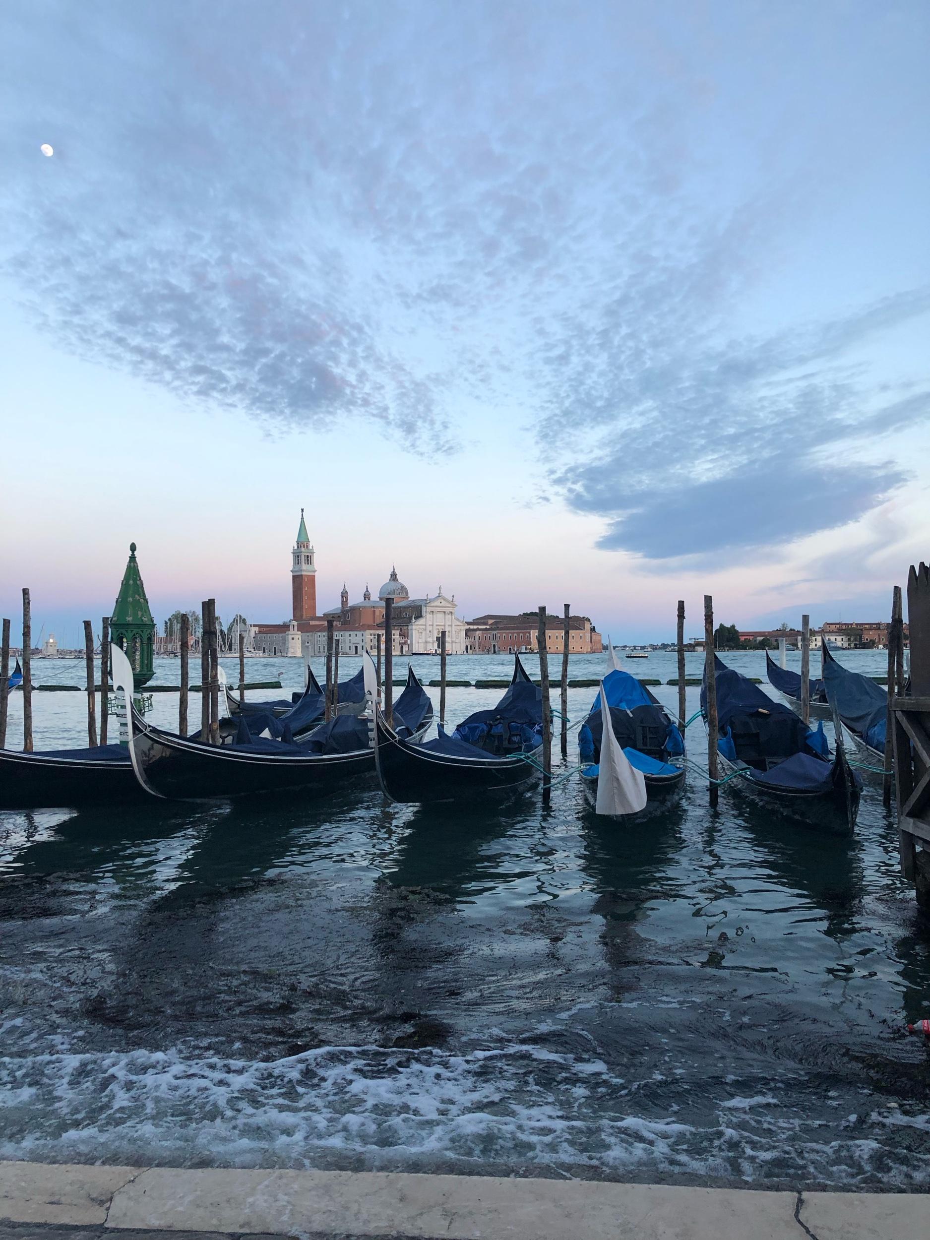 Gondolas in front of San Marco