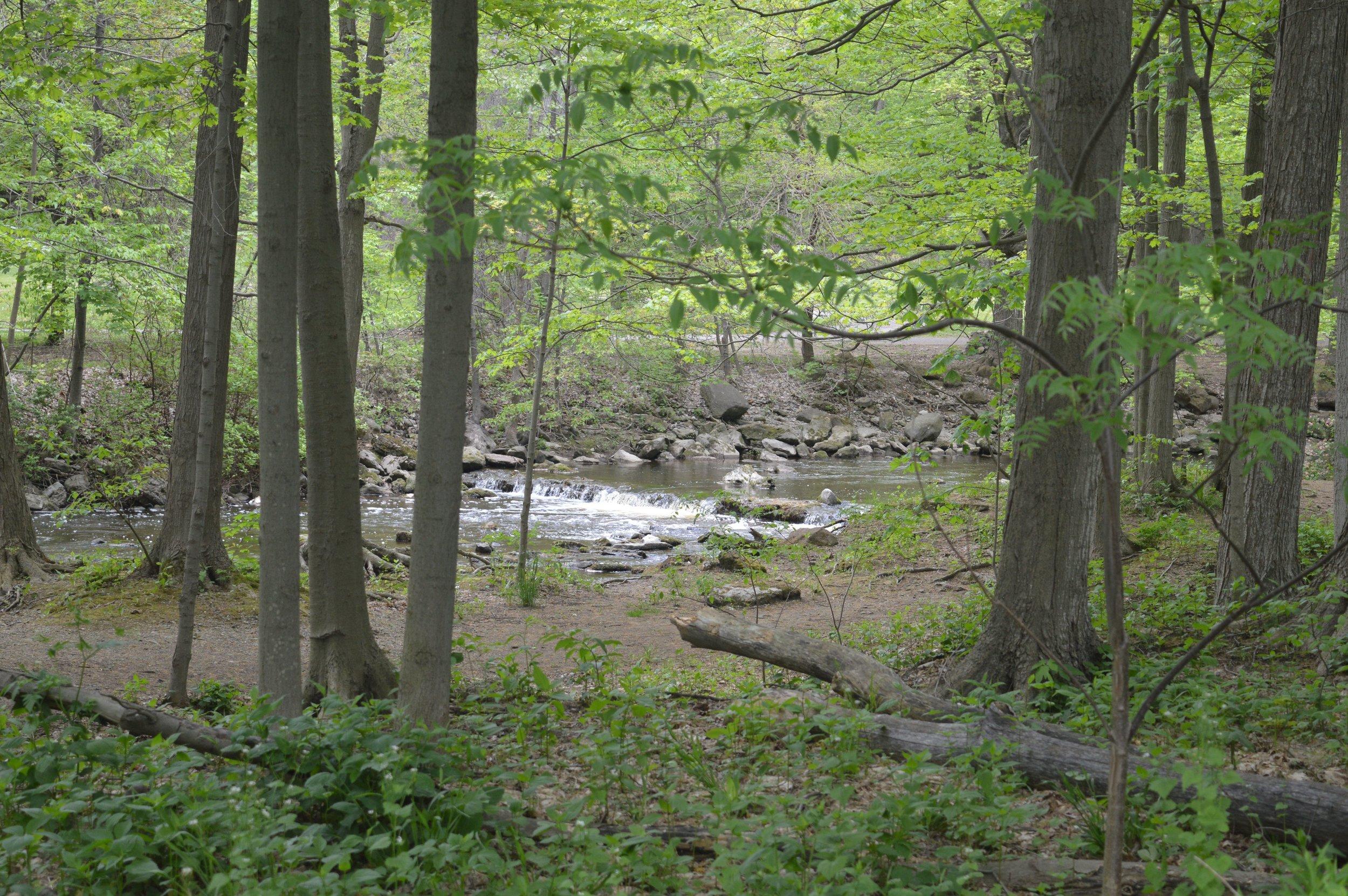 Akron Falls Park, Akron, NY