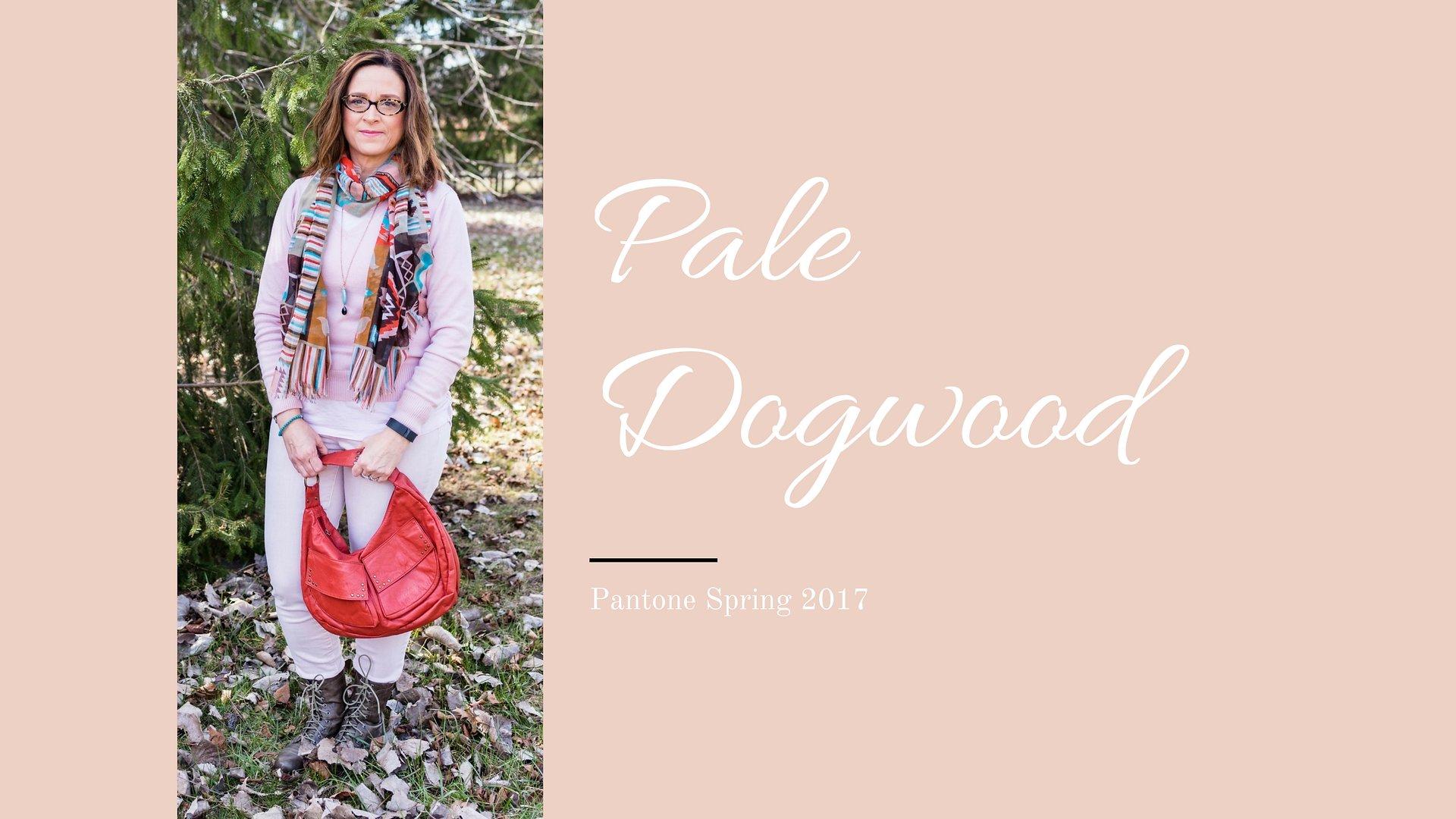 Pantone Spring 2017 - Pale Dogwood