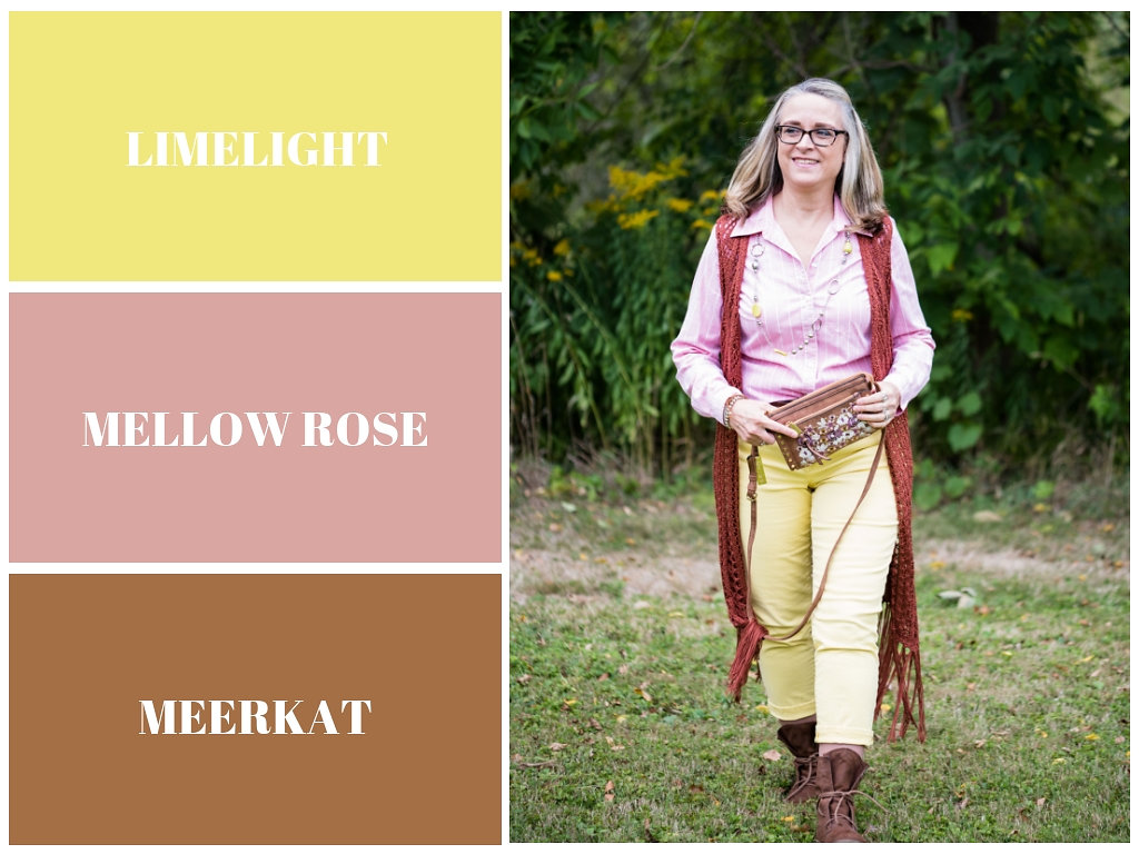 Pantone Fall 2018 - Limelight, Mellow Rose and Meerkat