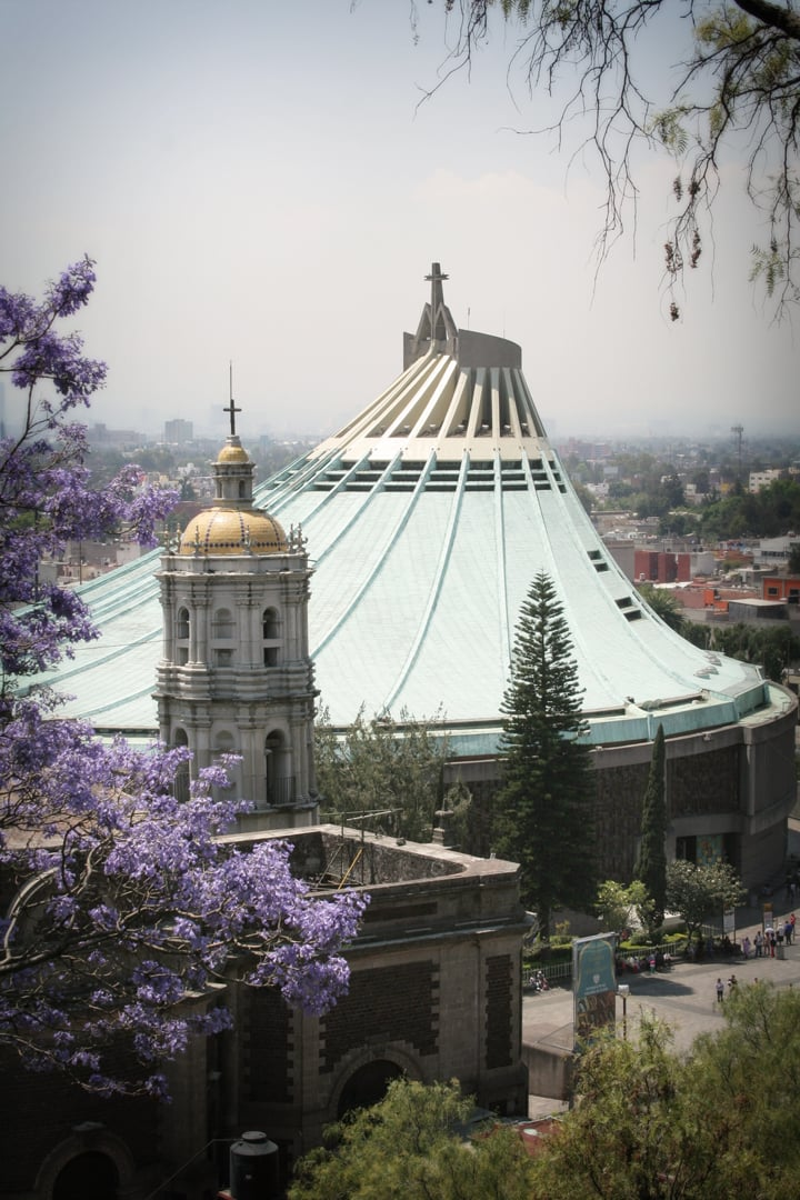 basilica of our lady of guadalupe, mexico city
