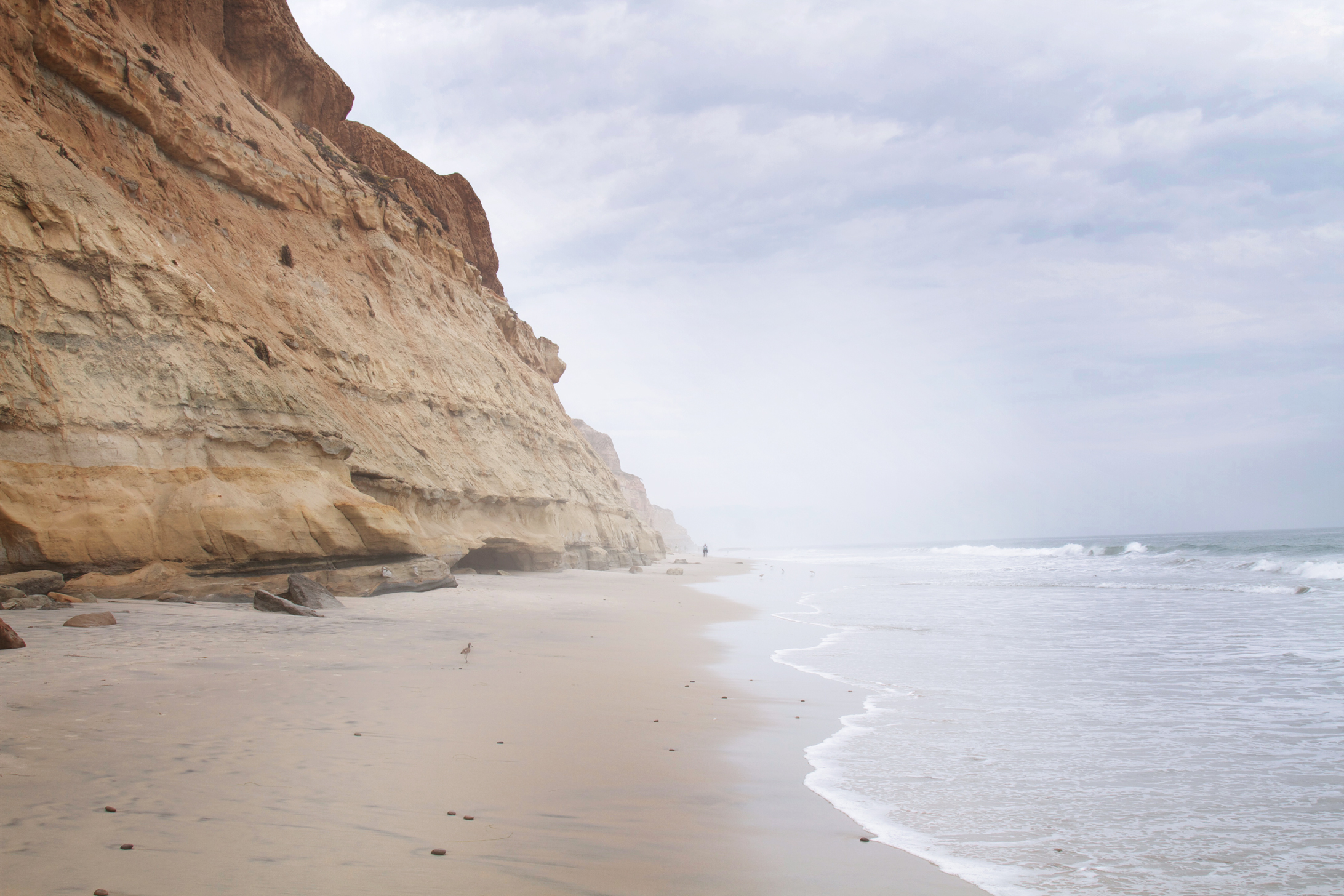 torrey pines beach - san diego, california