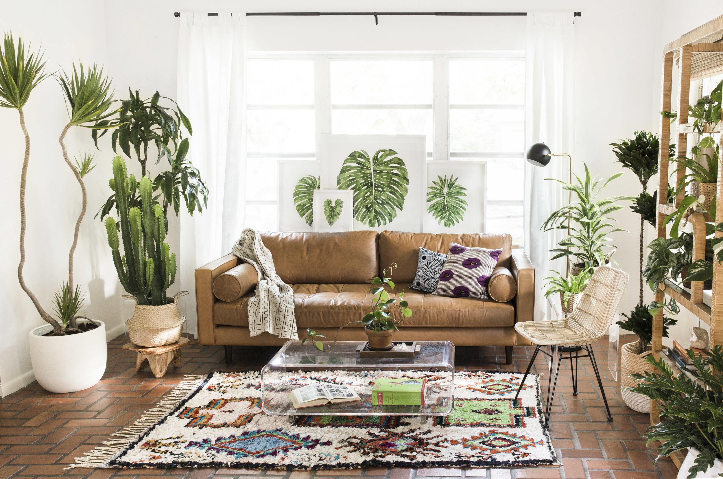 Living Pattern Studio