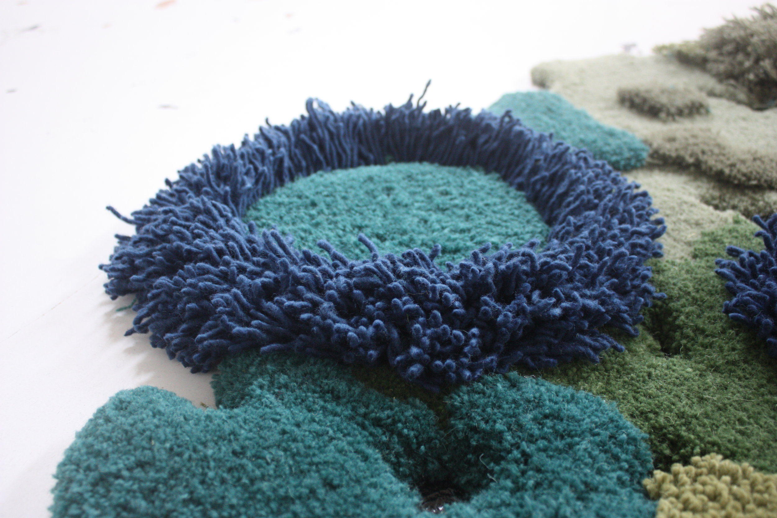 canarias rug.JPG
