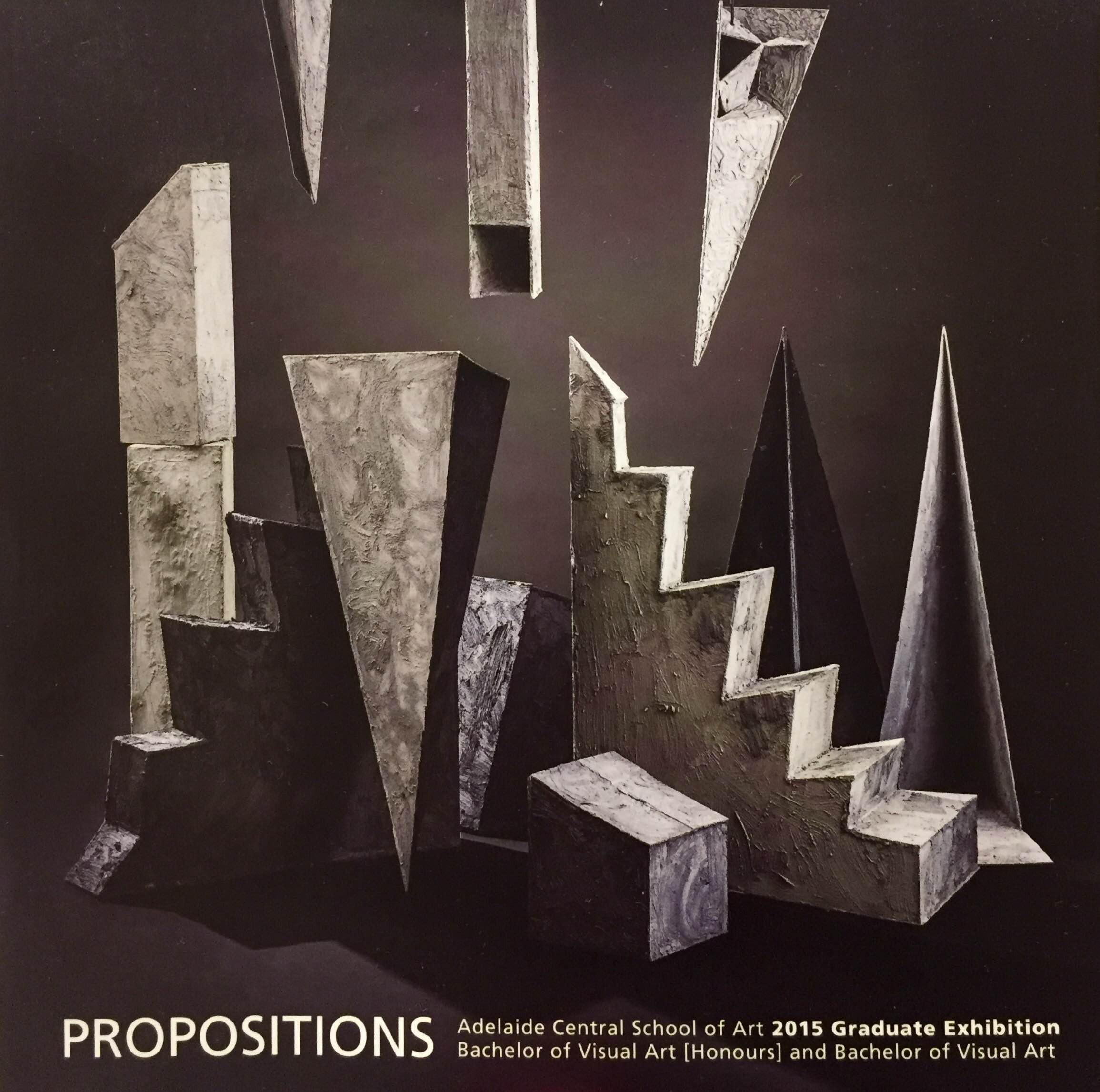 Cover of 'Propositions' catalogue for the Adelaide Central School of Art graduate exhibition, image by James Field