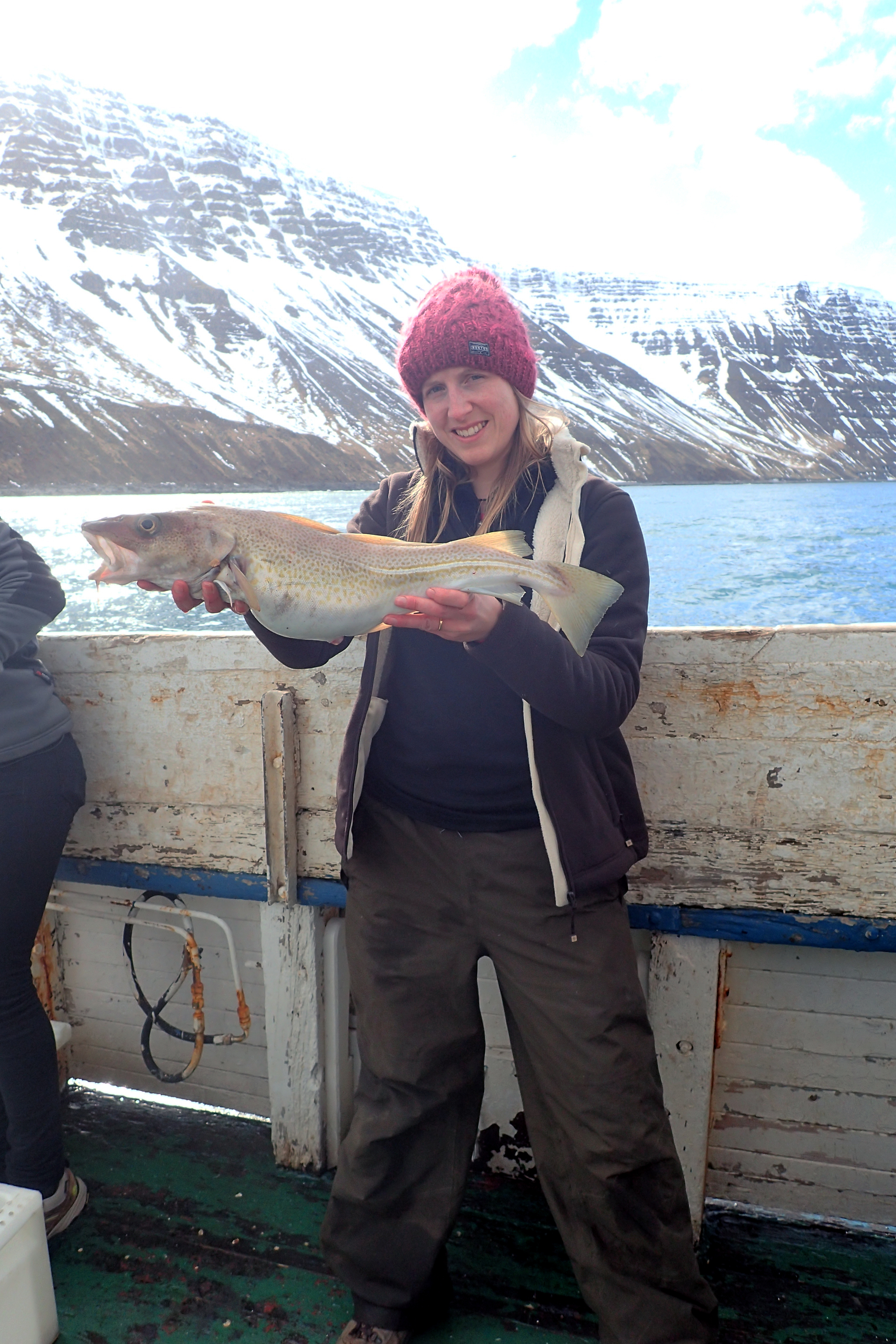 Iceland - The Big Fish