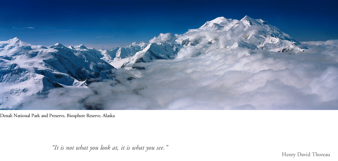 denali_quote.jpg
