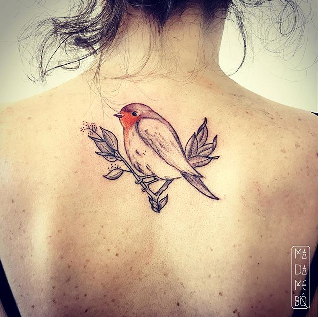 #littlebird #tattoo un #rougegorge en plein #winter ❄️#thanks @candicebodyart to trust in me 🙏🏻✨ #firsttattoo #colortattoo #backtattoo #birdtattoo #igersneuchatel #vegan #vegantattoo #swisstattoo #tattooproject #tattooartist #inked #tattooed #inkedgirl #tattooedgirl