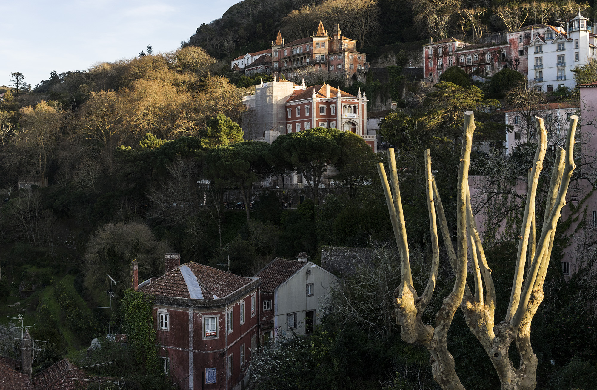 Sintra at sunset