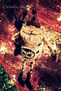 A Lilies' Family tree ornament... Santa's a hoot!