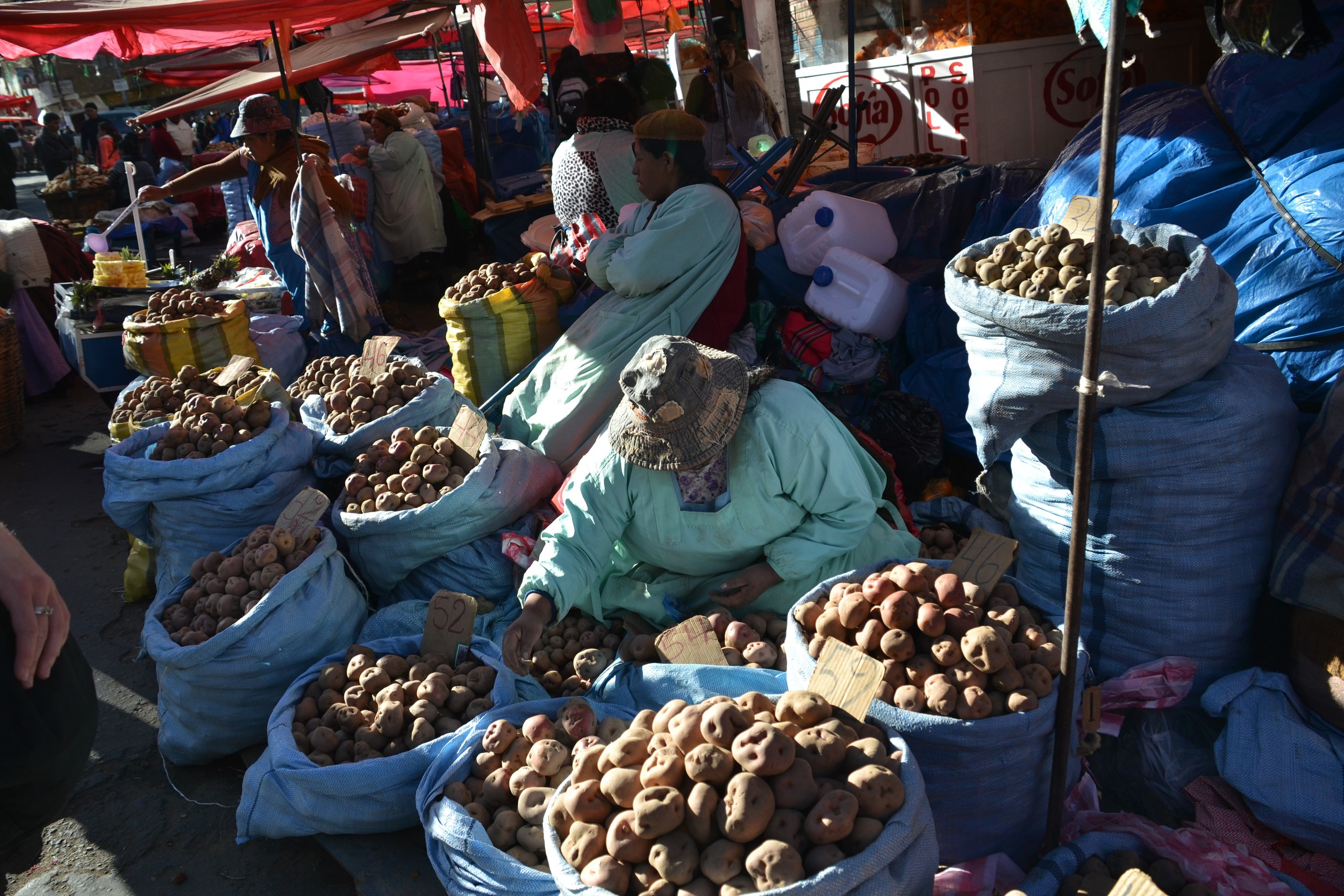 Women selling potatoes in a Bolivian marketplace.