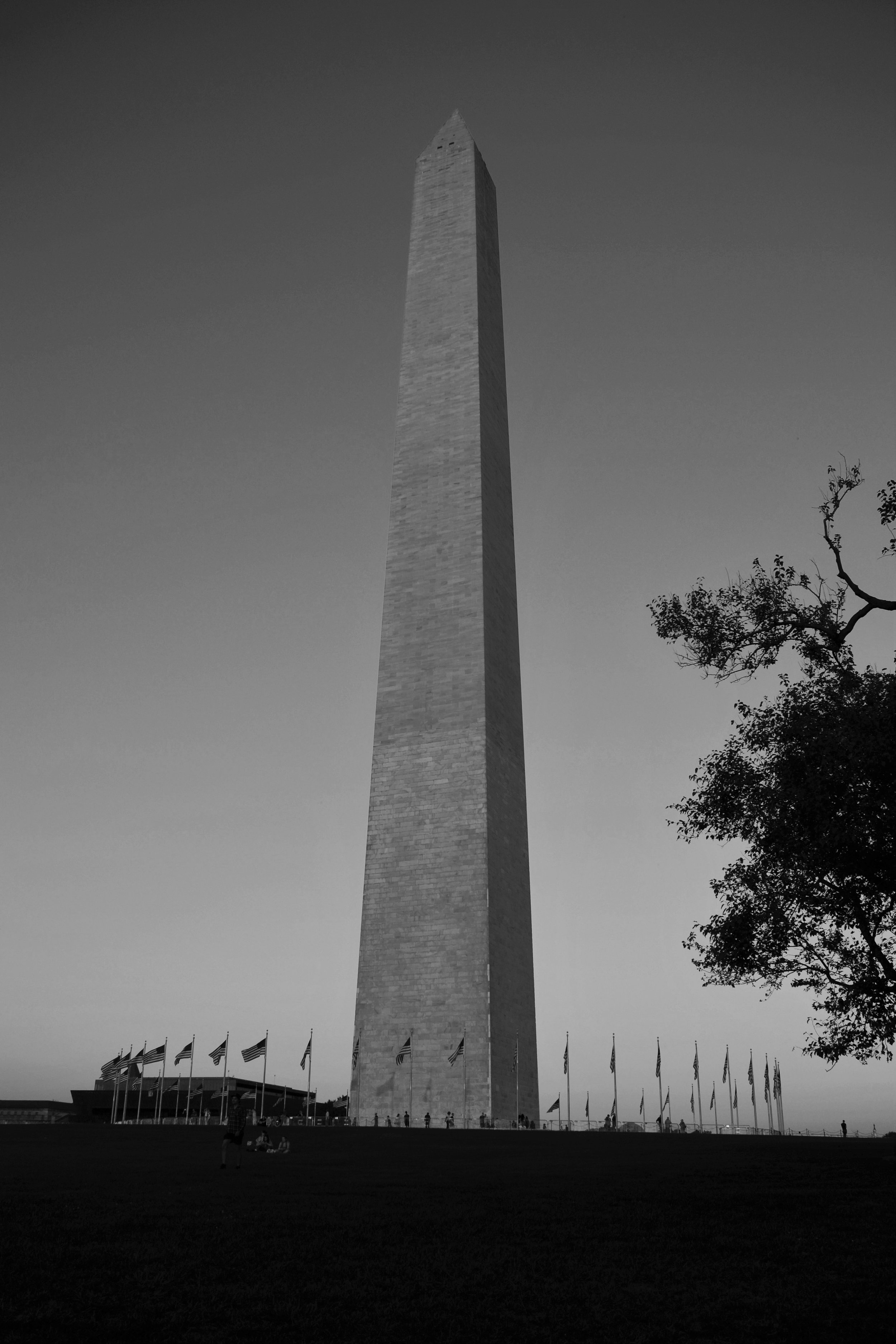 The Washington Erection.