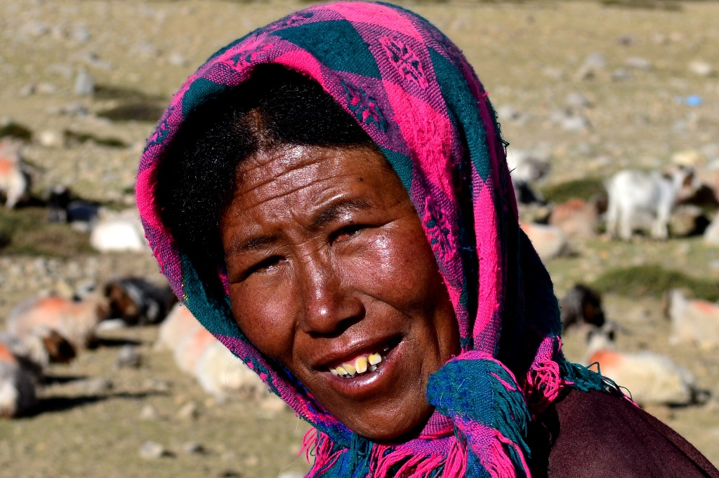 A Champa nomad, India