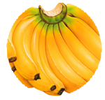 Bannanas