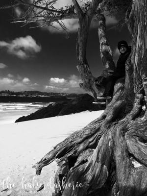 carmel by the sea • ca