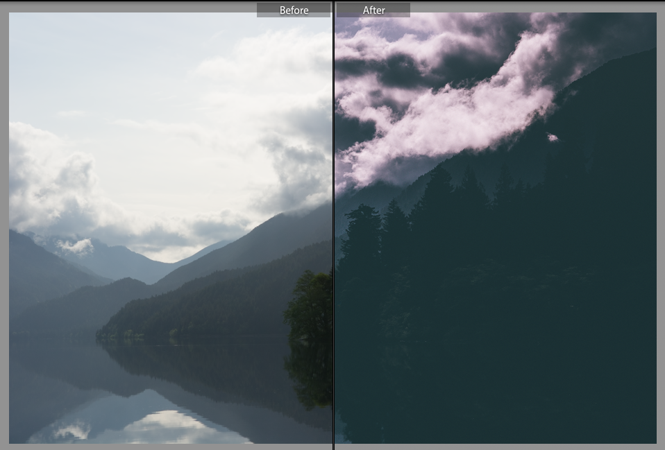 before-and-after-olympic-national-forest