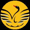 sswa icon