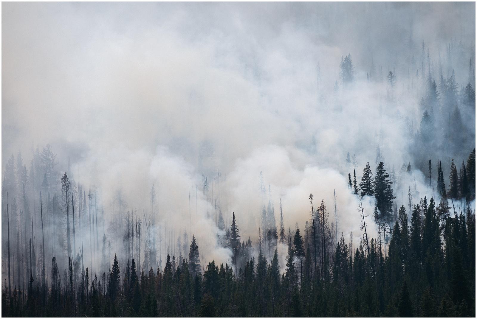 Wildfire near Yellowstone