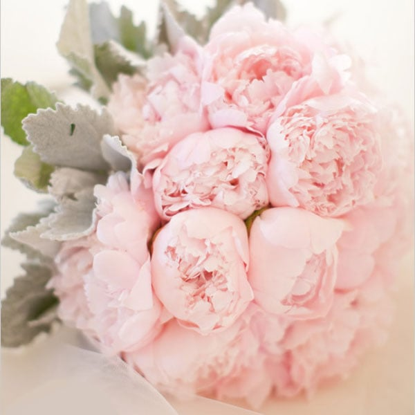 Peonies bridal bouquet