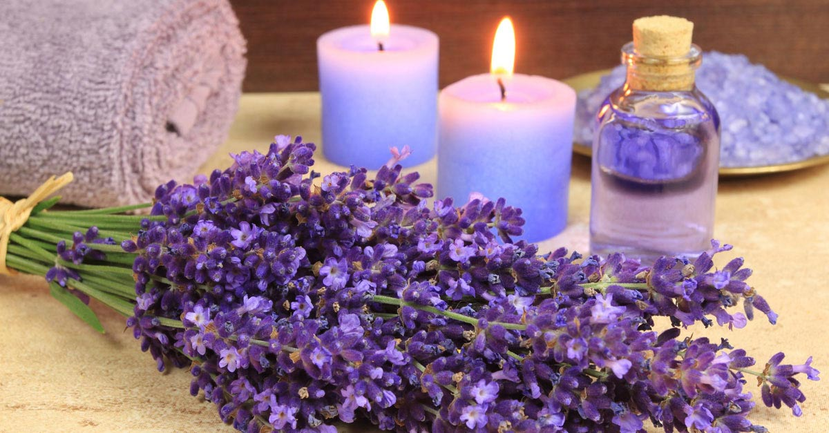 lavender room candles