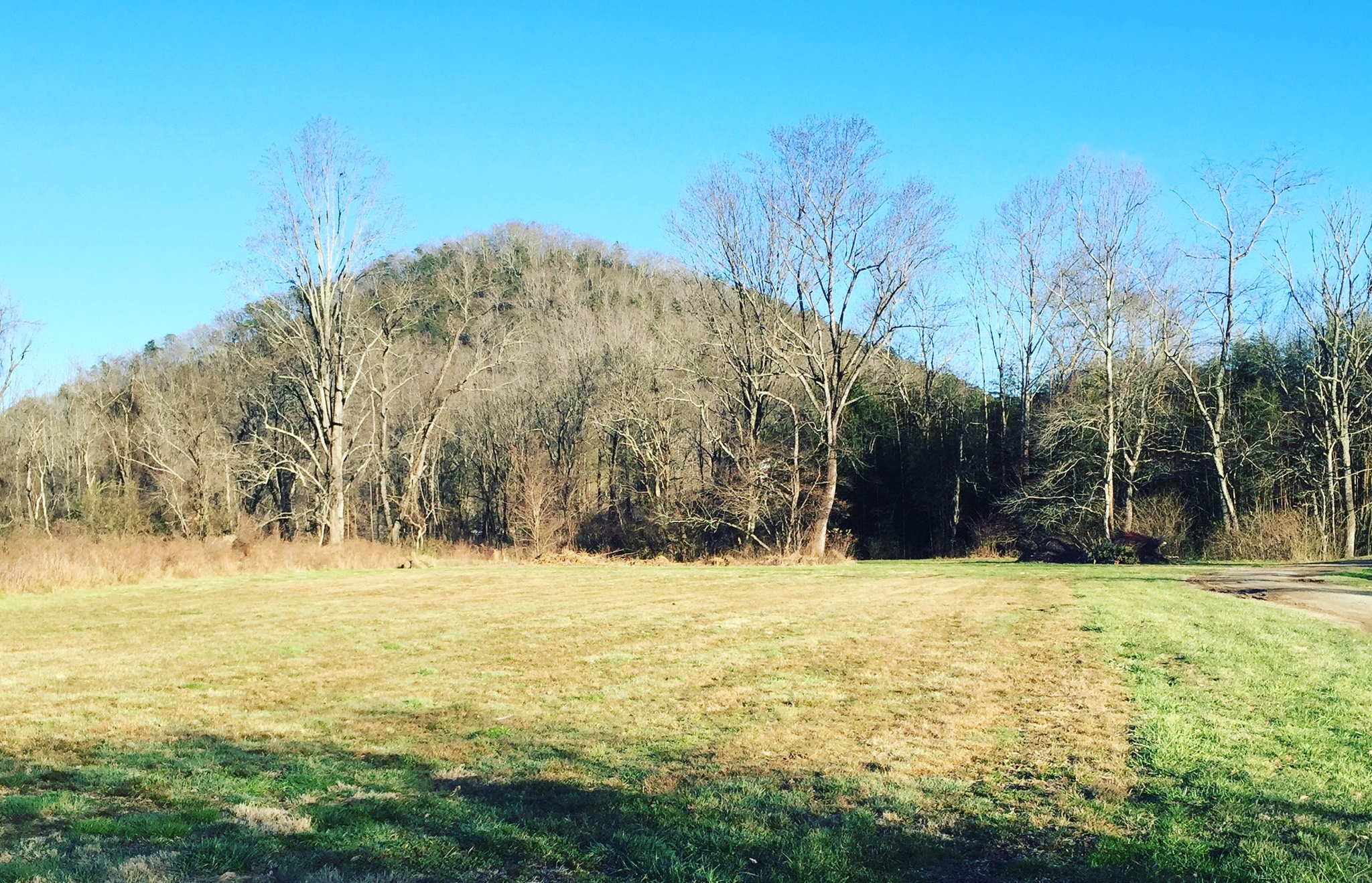 Beautiful bottomland that is the new home of Flourish. So much work to be done!