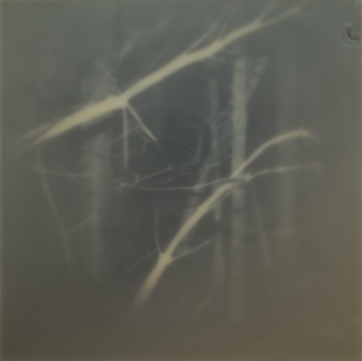 Untitled - 60