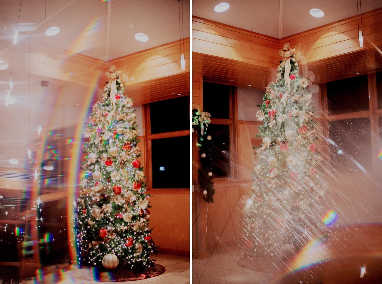 096_Haavig_Danada-Christmas-December-Wedding_0170_Haavig_Danada-Christmas-December-Wedding_0169_Decemberwedding_ChristmasWedding_DanadaHouse_DanadaHouseWedding_Chicagowedding_ChicagoSuburbWedding.jpg