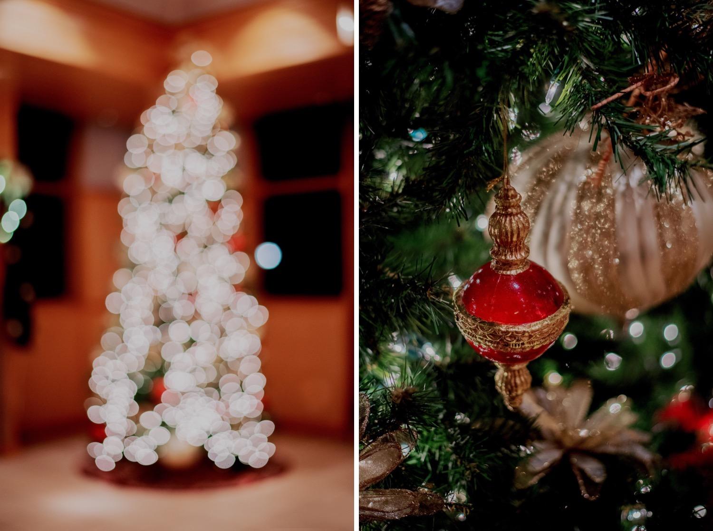 099_Haavig_Danada-Christmas-December-Wedding_0173_Haavig_Danada-Christmas-December-Wedding_0168.jpg